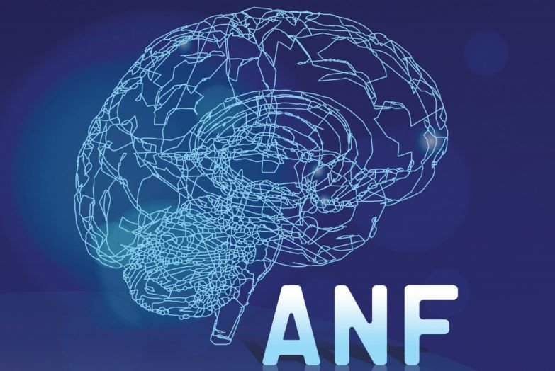 Adriatic Neurology Forum in Budva from May 22 26 2