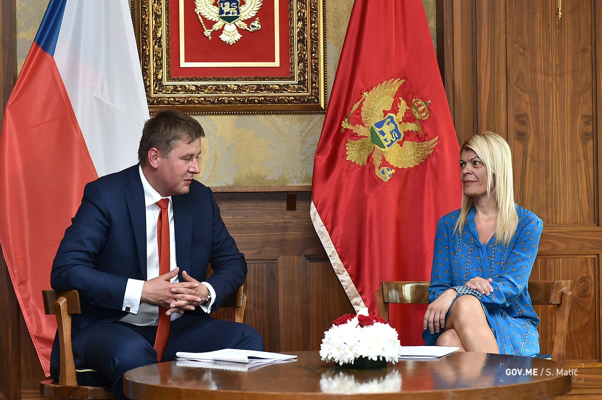 Montenegro and Czech Republic Scientific and Technological Cooperation11