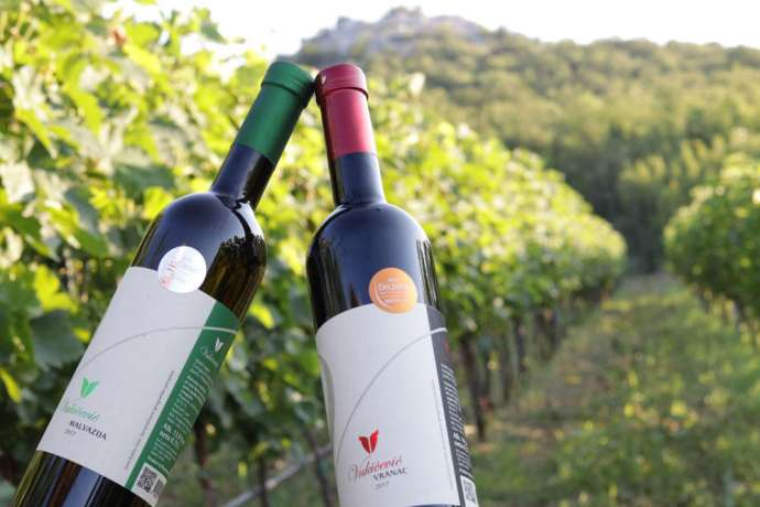 Wines from Montenegro Win Prizes at Decanter World Wine Awards